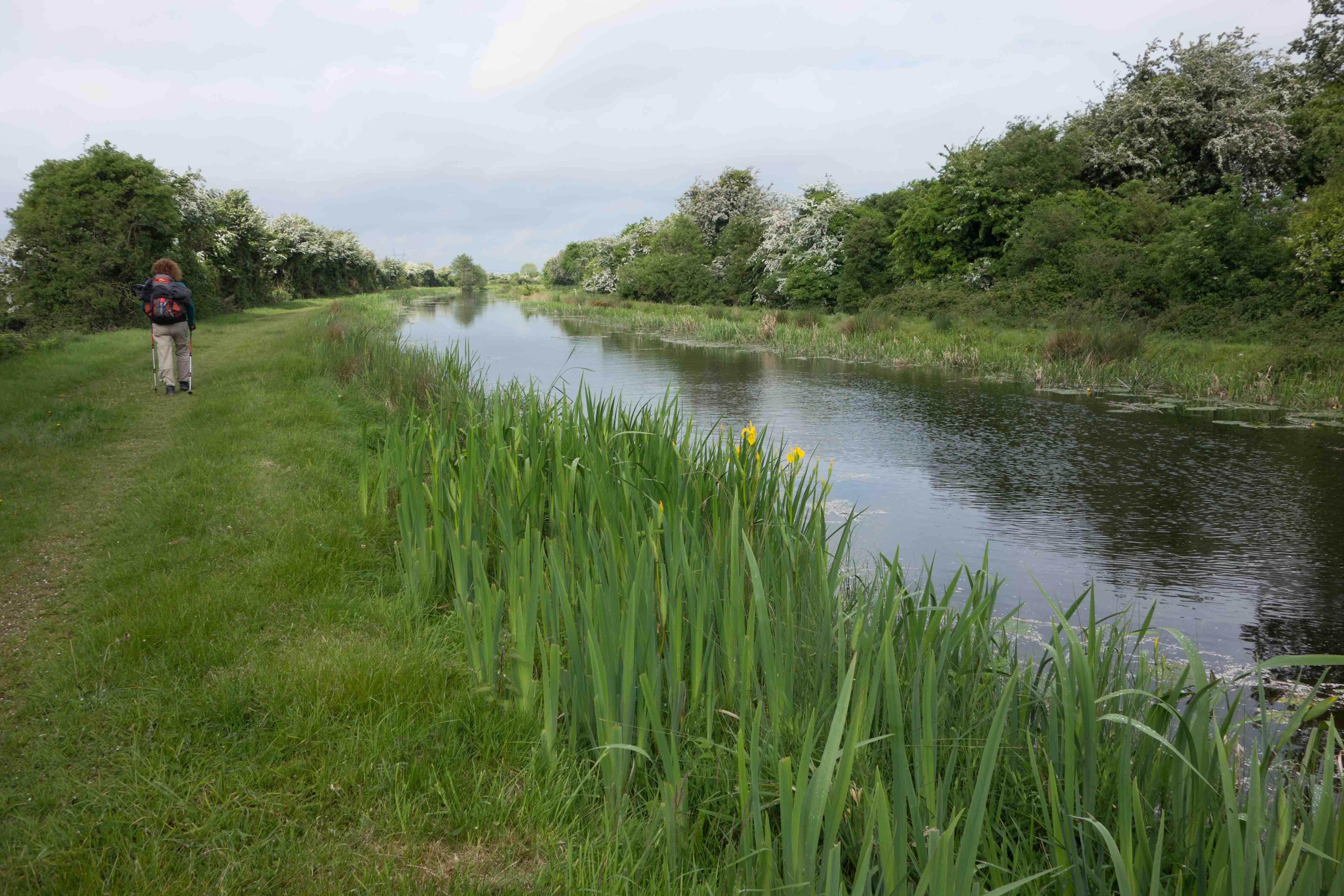 Veel natuurschoon langs het kanaal. Foto auteur.